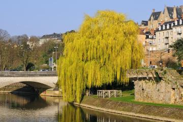 Le Mans: Car hire in 2 pick-up locations