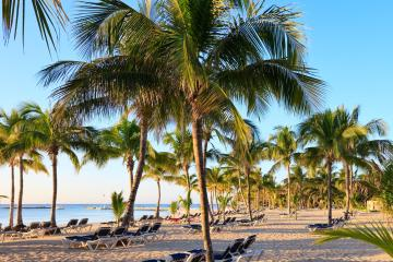 Playa del Carmen: Car rentals in 14 pickup locations