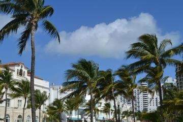Miami Beach: Car hire in 27 pick-up locations