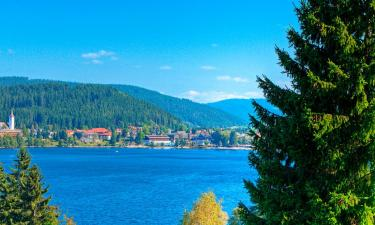 Vacation Homes in Titisee-Neustadt