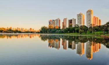 Hotéis que aceitam pets em Londrina