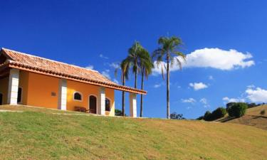 Pet-Friendly Hotels in Pouso Alegre