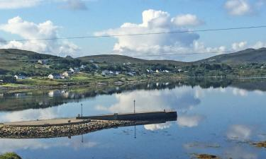 Pet-Friendly Hotels in Dungloe