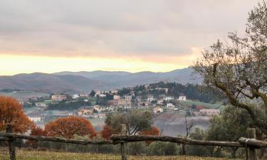 Villor i San Venanzo