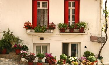 Family Hotels in Neo Klima