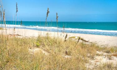 Pet-Friendly Hotels in Ormond Beach
