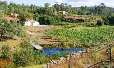 Budget hotels in Vitorino dos Piães