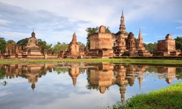 Pet-Friendly Hotels in Sukhothai