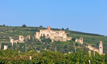 B&Bs in Soave