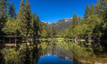 Accessible Hotels in Idyllwild