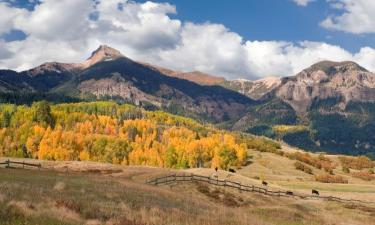 Pet-Friendly Hotels in Pagosa Springs