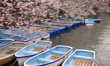 Hotels with Parking in Kawagoe