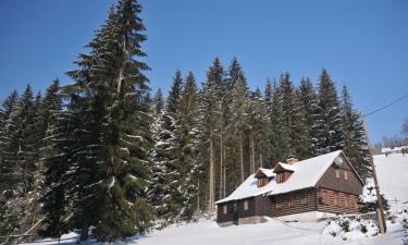 Ski Resorts in Dolni Dvur