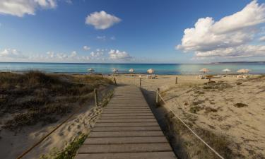 Budget hotels in Es Arenals