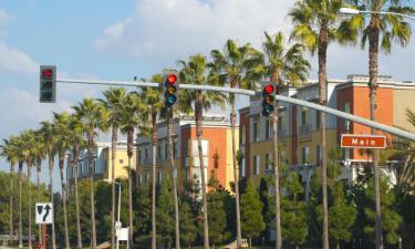 Pet-Friendly Hotels in Irvine