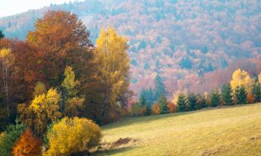 Domki górskie w Szczyrku