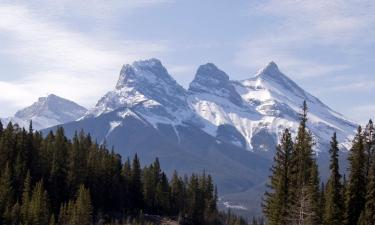 Pet-Friendly Hotels in Canmore