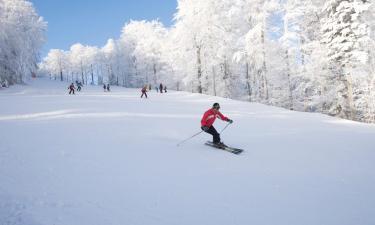 Ski Resorts in Fügenberg