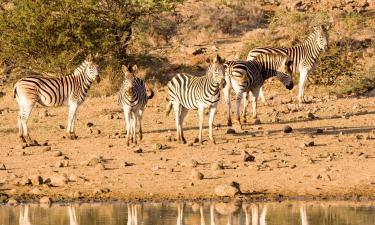 Lodges in Nambiti Private Game Reserve