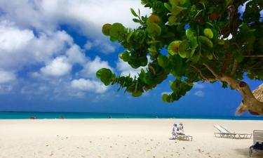Resorts in Palm-Eagle Beach