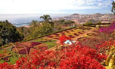 Ferienwohnungen in Funchal