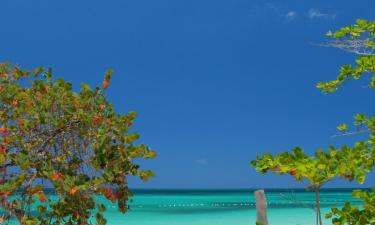 Hotels in Negril
