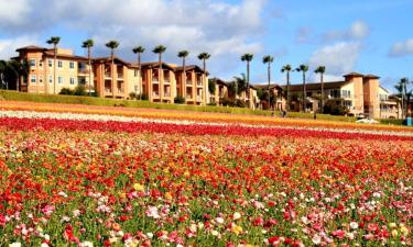 Hôtels Hilton à Carlsbad