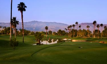 Pet-Friendly Hotels in Palm Springs