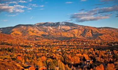 Pet-Friendly Hotels in Steamboat Springs