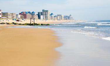 Pet-Friendly Hotels in Ocean City