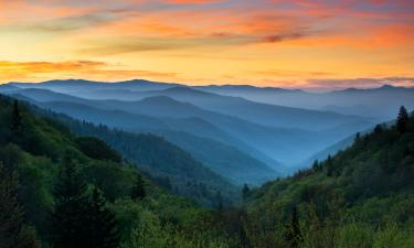 Hotels in Pigeon Forge