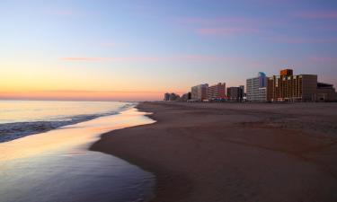 Pet-Friendly Hotels in Virginia Beach