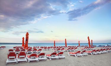 Pet-Friendly Hotels in Eforie Nord