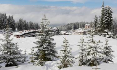 Spa hotels in Pamporovo