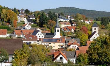 Апартаменты/квартиры в городе Вальд-Михельбах