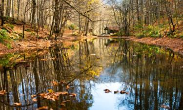 Hotels with Parking in Bolu