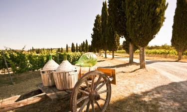 Farm stays in Barberino di Val d'Elsa