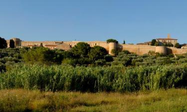 Lantgårdar i Magliano in Toscana