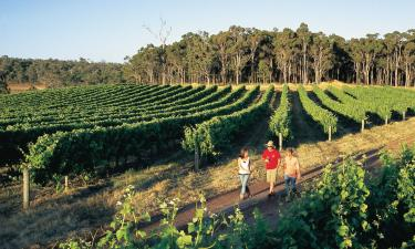 Hotels in Margaret River Town