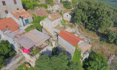 Apartments in Babino Polje