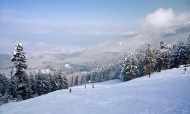 Ski Resorts in Elatochori