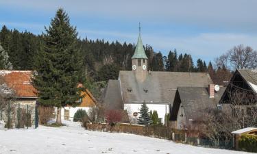 Ski Resorts in Mönichkirchen