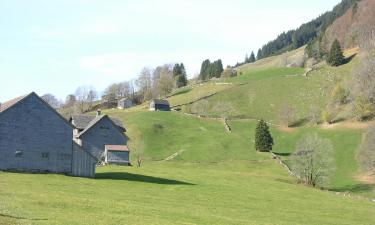 Hotels with Parking in Alt Sankt Johann