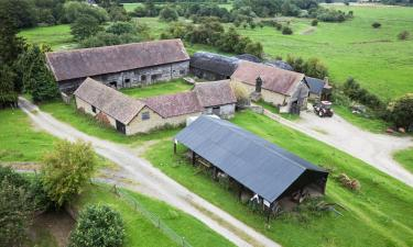 Pet-Friendly Hotels in Craven Arms