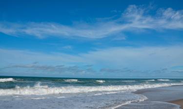 Pet-Friendly Hotels in Carolina Beach