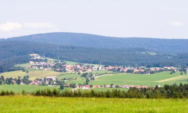 Отели с парковкой в городе Tönisvorst