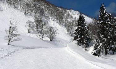 Guest Houses in Yuzawa