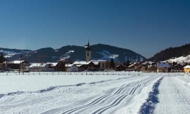Hotels in Hittisau