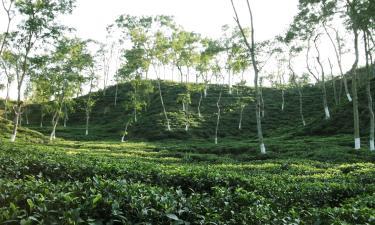 Cheap Hotels in Sylhet