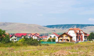 Guest Houses in Floreşti